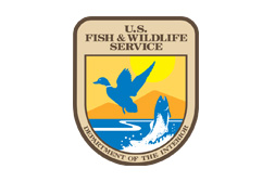 FISH AND WILD LIFE SERVICE
